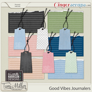 Good Vibes Journalers by Aimee Harrison and Tami Miller