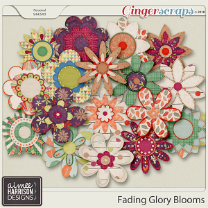 Fading Glory Blooms by Aimee Harrison