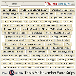 This is Me November Word Strips by Karen Schulz