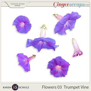 Flowers 03 Trumpet Vine by Karen Schulz