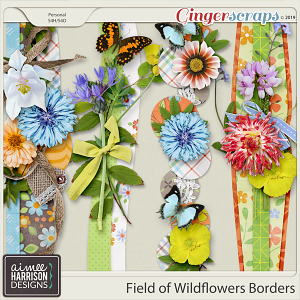 Field of Wildflowers Borders by Aimee Harrison