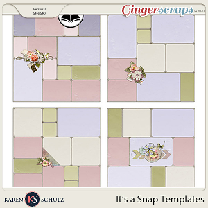 Its a Snap Templates by Snickerdoodle Designs and ADB Designs