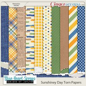 Sunshiney Day Torn Papers
