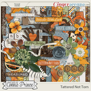 Tattered Not Torn - Kit