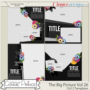 The Big Picture Volume 26 - 12x12 Temps (CU Ok) by Connie Prince