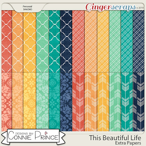 This Beautiful Life - Extra Papers by Connie Prince