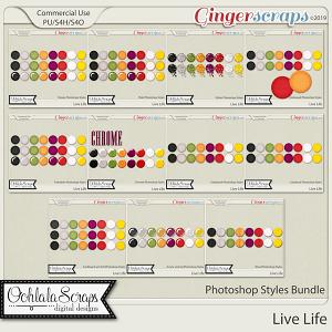 Live Life CU Photoshop Styles Bundle
