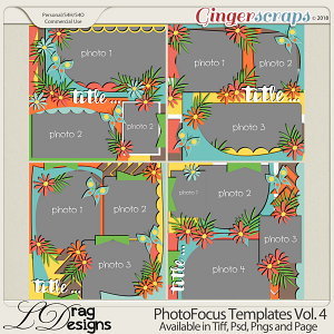 Photo Focus Templates Vol. 4 by LDragDesigns