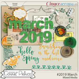 #2019 March - Mixed Media by Connie Prince