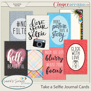 Take A Selfie Journal Cards