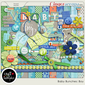 Baby Bunches Boy Kit
