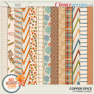 Copper Spice Patterned Papers by JB Studio