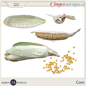 Corn by Karen Schulz
