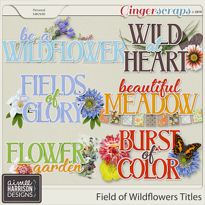 Field of Wildflowers Titles by Aimee Harrison