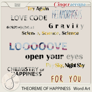 Theoreme Of Happiness Word Art