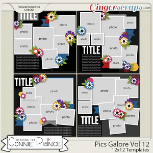 Pics Galore Volume 12 - 12x12 Temps (CU Ok) by Connie Prince