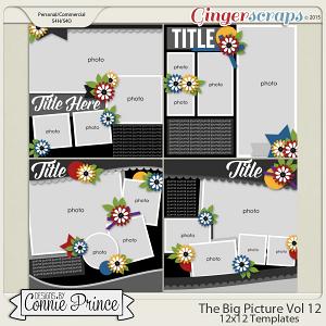 The Big Picture Volume 12 - 12x12 Temps (CU Ok)
