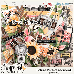 Picture Perfect Moments {Elements}