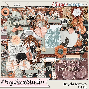 Bicycle for Two Kit