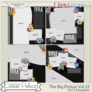 The Big Picture Volume 25 - 12x12 Temps (CU Ok) by Connie Prince