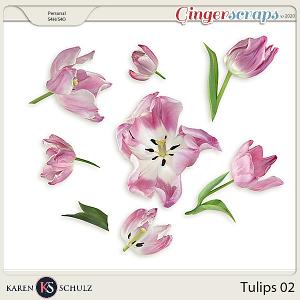 Tulips 02 by Karen Schulz
