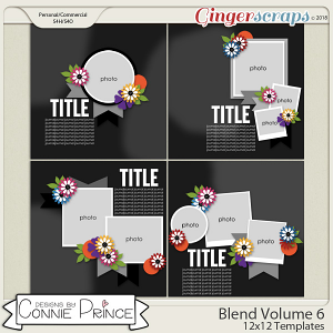 Blend Volume 6 - 12x12 Temps (CU Ok) by Connie Prince