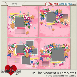 In The Moment 4 Templates by CarolW Designs