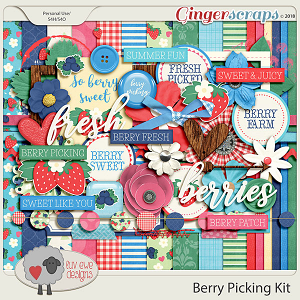 Berry Picking Kit by Luv Ewe Designs