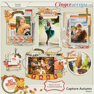 Capture Autumn Stacks by JB Studio