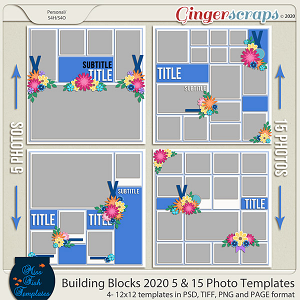 Building Blocks 2020 5 and 15 Templates by Miss Fish