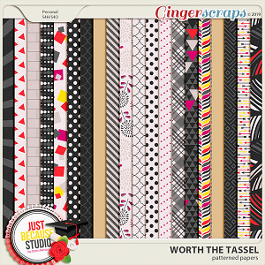 Worth The Tassel Patterned Papers by JB Studio