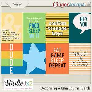 Becoming A Man Journal Cards
