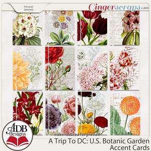 A Trip To DC - U.S. Botanic Garden Accent Cards by ADB Designs