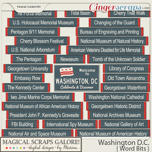 Washington DC (word bits)