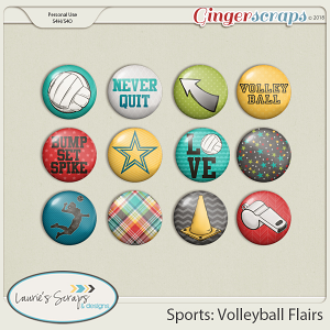 Sports: Volleyball Flairs