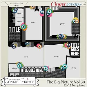 The Big Pic Volume 30 - 12x12 Temps (CU Ok) by Connie Prince