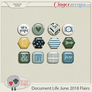 Document Life June 2018 Flairs by Luv Ewe Designs