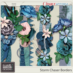 Storm Chaser Borders by Aimee Harrison