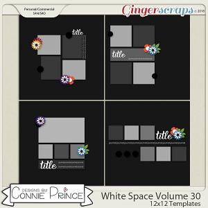 White Space Volume 30 - 12x12 Temps (CU Ok) by Connie Prince