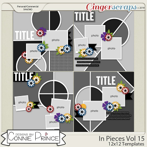 In Pieces Volume 15 - 12x12 Temps (CU Ok) by Connie Prince