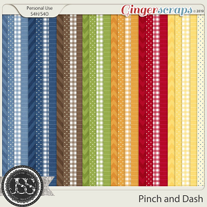 A Pinch and A Dash Pattern Papers