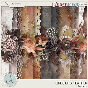 Birds Of A Feather Borders by Ilonka's Designs