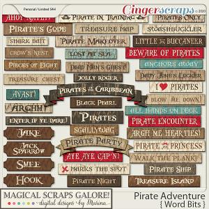 Pirate Adventure (word bits)