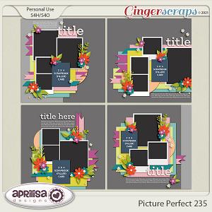 Picture Perfect 235 by Aprilisa Designs