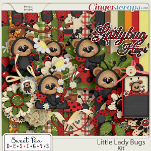 Little Ladybugs Kit