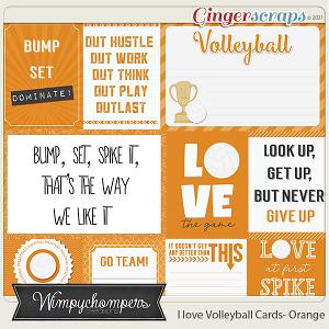 I Love Volleyball Cards- Orange