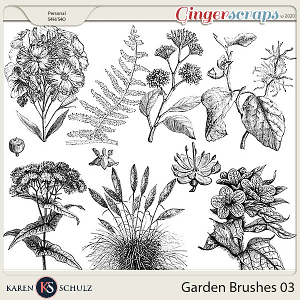 Garden Brushes 03 by Karen Schulz