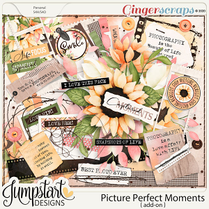 Picture Perfect Moments {Add-On}