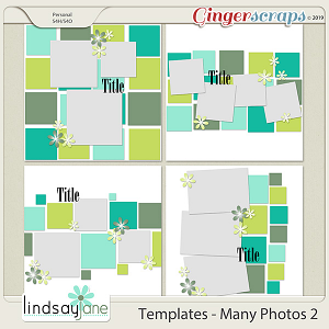 Templates - Many Photos 2 by Lindsay Jane