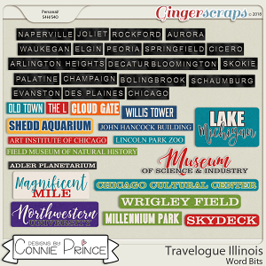 Travelogue Illinois - Word Bits by Connie Prince